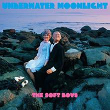 The Soft Boys - Underwater Moonlight (CD)