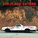 The Flesh Eaters - I Used To Be Pretty (CD)