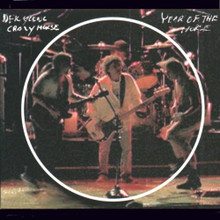 Neil Young - Year Of The Horse (Live) (CD)