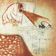 Deerhoof - Future Teenage Cave Artists (CD)