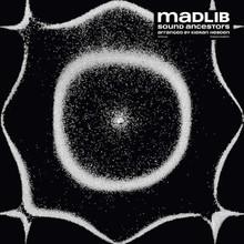 Madlib - Sound Ancestors, Arranged By Kieran Hebden (VINYL LP)