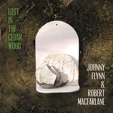 Johnny Flynn - Lost In The Cedar Wood (VINYL LP)