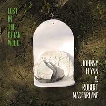 Johnny Flynn - Lost In The Cedar Wood (CD)