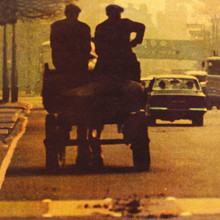 Ronnie Lane - Anymore For Anymore (VINYL LP)