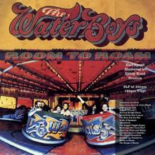 The Waterboys - Room To Roam Half Speed Master (VINYL LP)