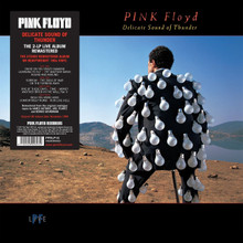 "Pink Floyd - Delicate Sound Of Thunder (2 x 12"" VINYL LP)"