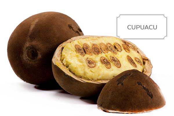 cupuacu1.jpg
