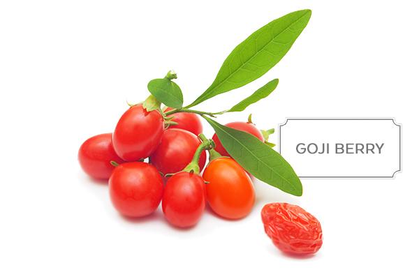 goji-berry1.jpg