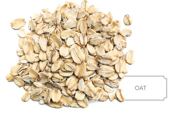 oat-a.jpg