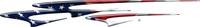 American Flag B490