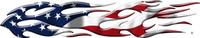 American Flag B863