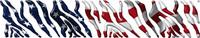 American Flag B888