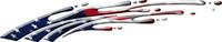 American Flag B1258
