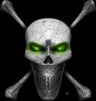 Digital Skull and Crossbones Green Wall Decal