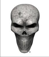 Bone Skull Angle 3