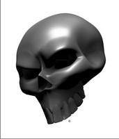 Carbon Fiber Angle Skull 1