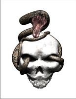 Snake Strike 1