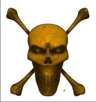 Digital Skull and Crossbones Full Gold