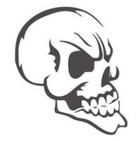Skull #16