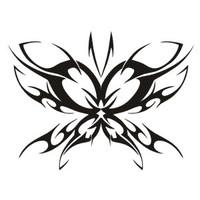 Butterfly #18