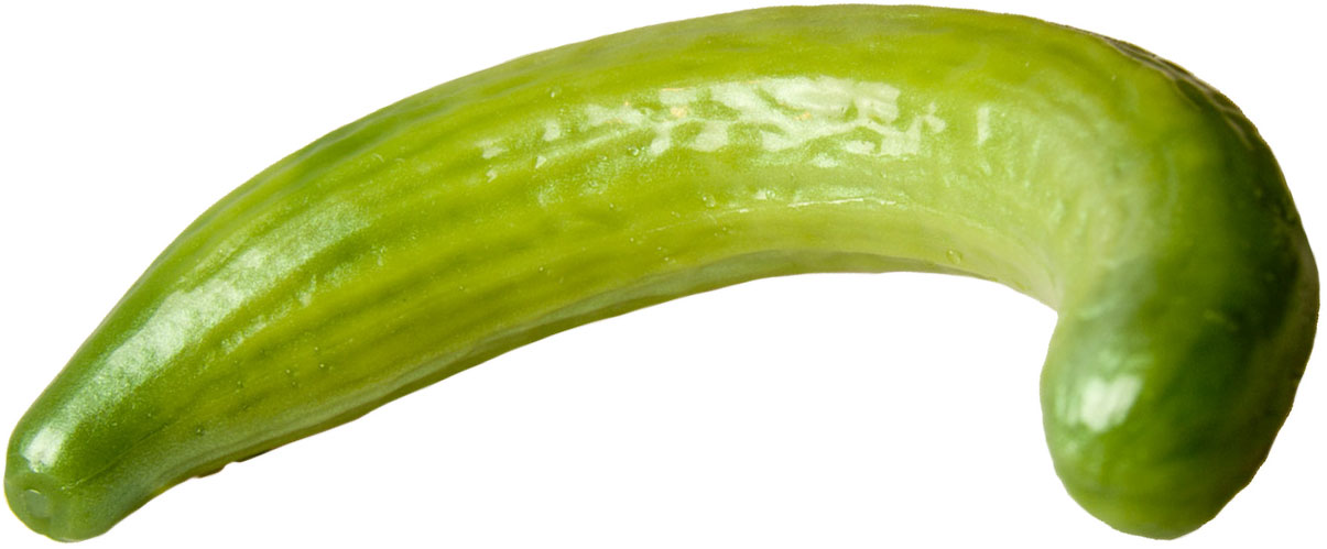 Curved Cucumber Silicone Dildo - Warmed
