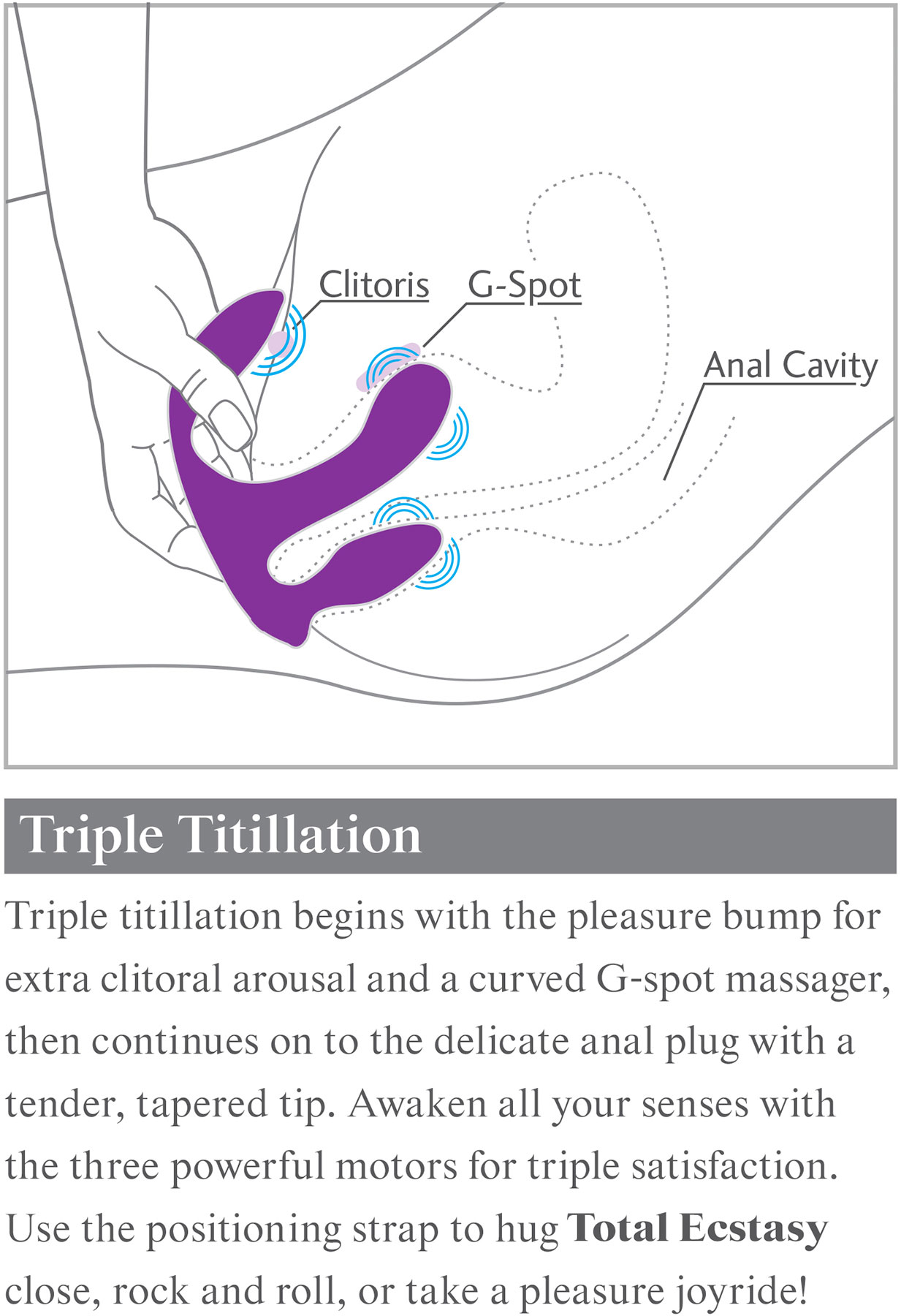 3Some Total Ecstasy Triple Stimulation Rechargeable Remote Controlled Silicone Vibrator - How To