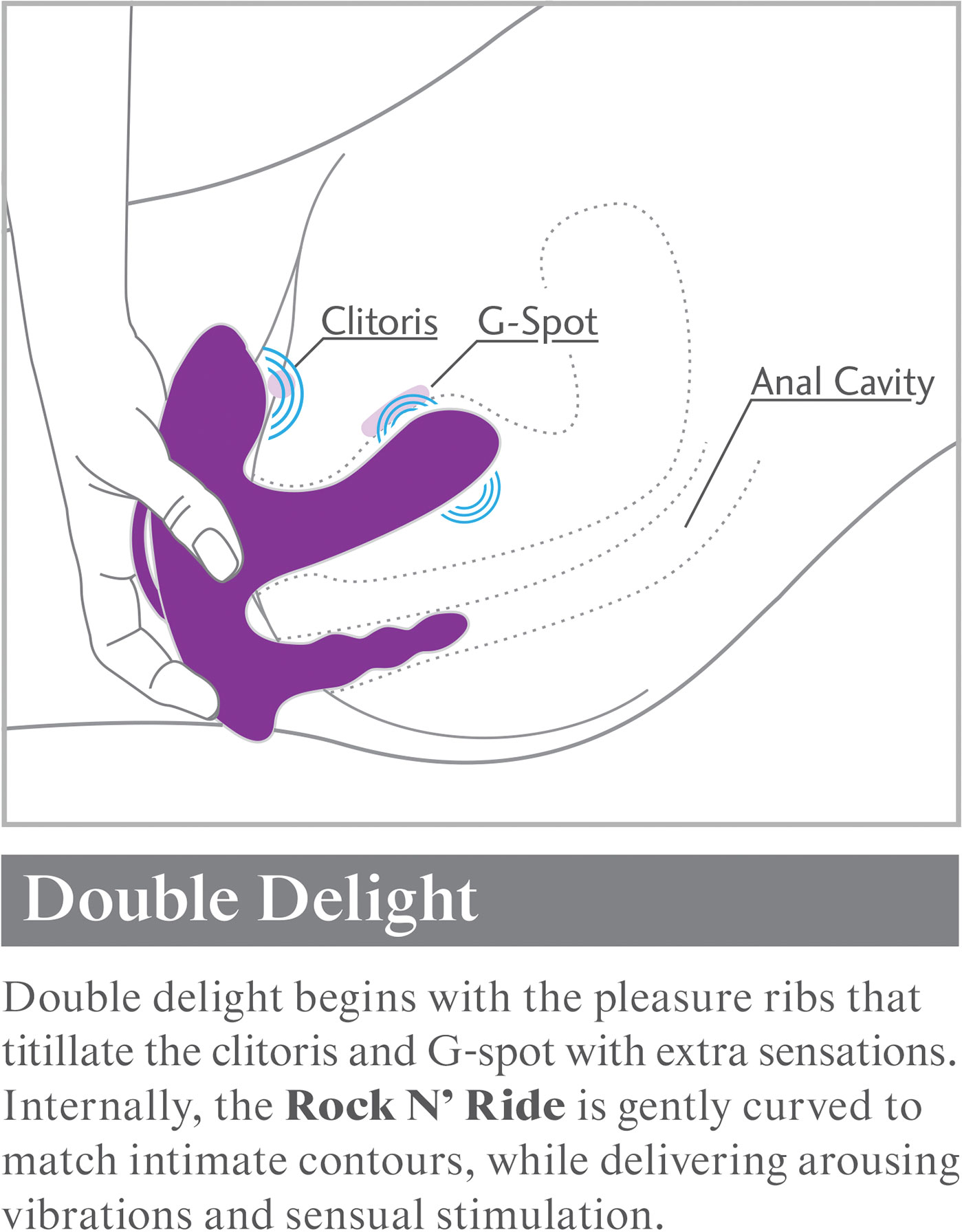 3Some Rock N Ride Triple Stimulation Rechargeable Remote Controlled Silicone Vibrator - How To