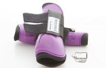 Hippopren Fetlock Boots Front