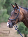 Horseware Rambo Mickle Bridle