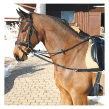 Side Reins with D Rings
