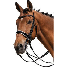 Black & White Double Leather Bridle