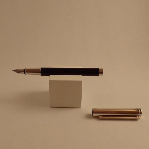 Cosmos Fountain Pen