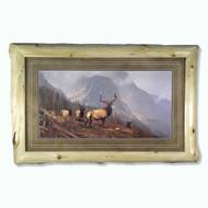 LFAL0037 Bookcliffs Elk