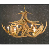 CHW12 Whitetail 12 Antler Chandelier