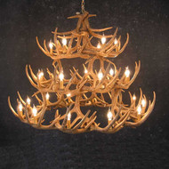 CHW42 Whitetail 42 Antler Chandelier