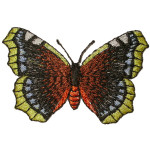Iron On Patch Applique - Butterfly Yellow Tipped Wings