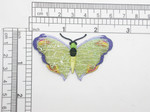 Butterfly Patch Sheer Sparkle Wing Embroidered Iron On Applique
