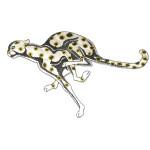 Iron On Patch Applique - Cheetah WBG Large