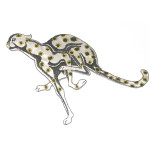 Iron On Patch Applique - Cheetah WBG Medium