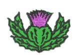 "Iron On Patch Applique - Thistle Scottish Highland 1 1/4"" High"
