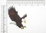 "Bald Eagle American - Iron On Patch Applique  Fully Embroidered   Measures 3"" x 4"" 76mm x 102mm"