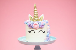 Intermediate Cake Decorating    8/27    10:00