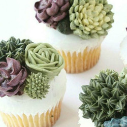 Buttercream Succulents   9/19       10:00 Richardson