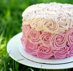 Beginner Cake    7/20     6:30pm   Richardson FULL
