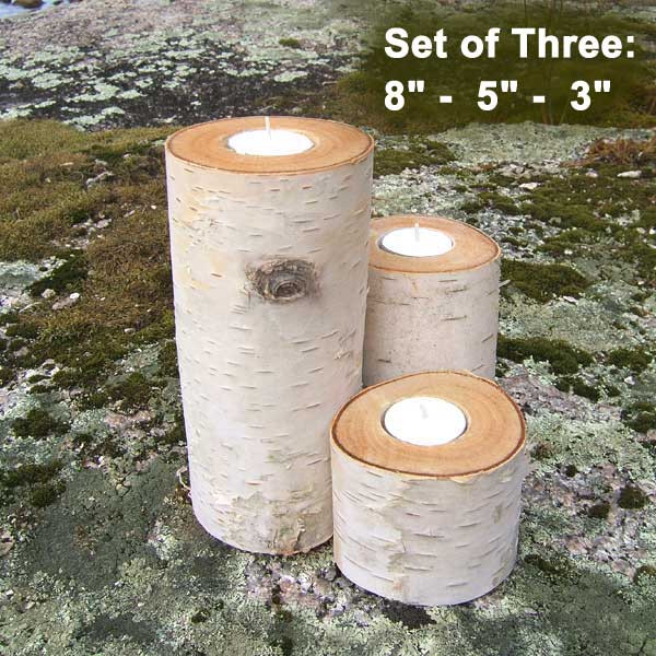 Set of three Birch Candle Holders