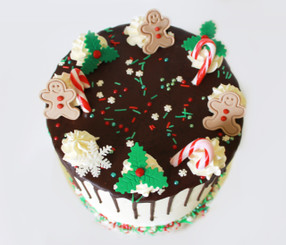 Christmas Drizzle Cake