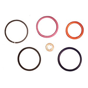 ADS INJECTOR SEAL KIT (94-03 FORD )