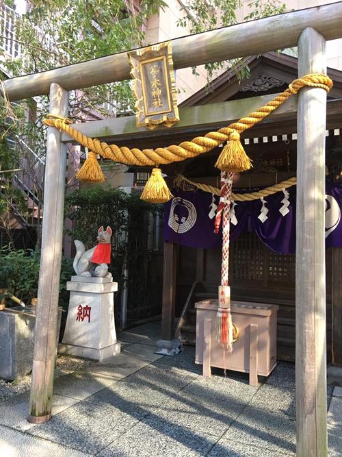 Tea tree Shrine - Chanoki Jinja