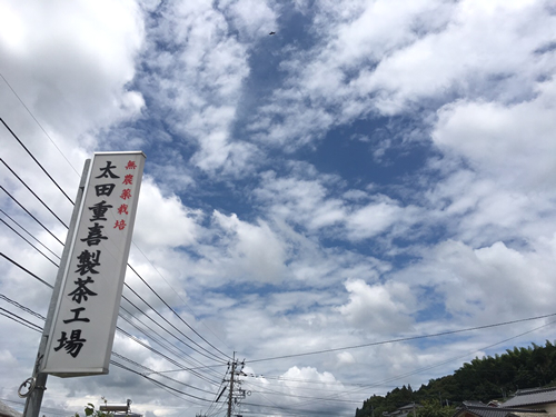Ota tea's signboard