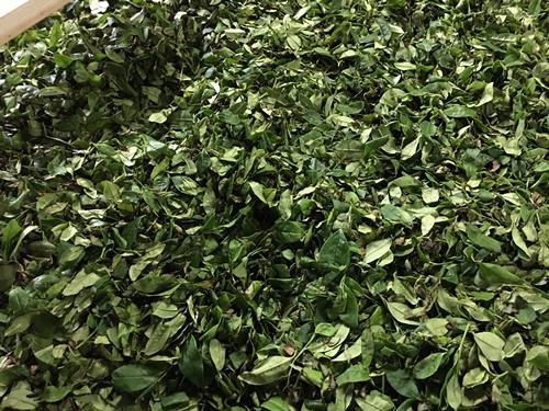 Ureshino Black Tea Leaf